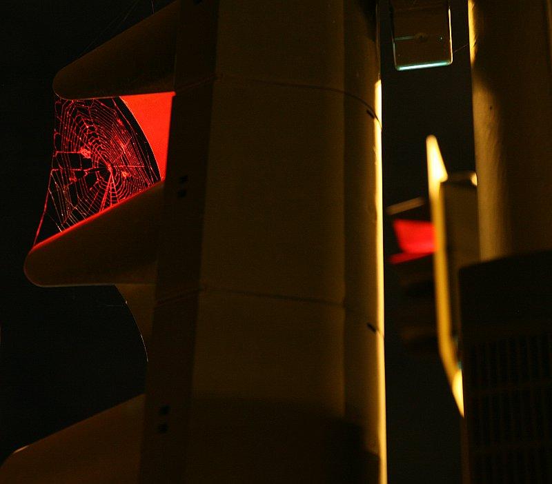 spinne-sieht-rot.jpg