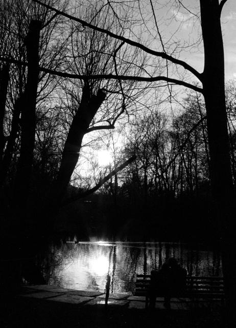 Sonnenuntergang im Tiergarten