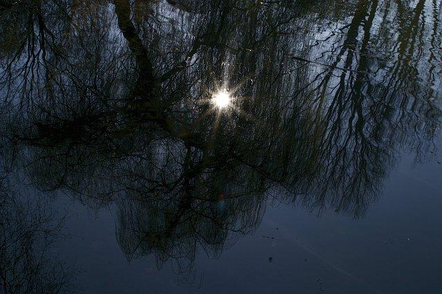 Spiegelbild der Sonne im Wasser (Berlin - Tiergarten)