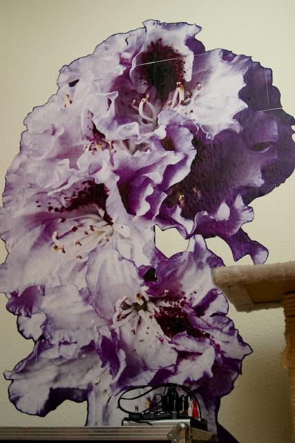 rhododendron-im-kinderzimmer-crw_5074.jpg