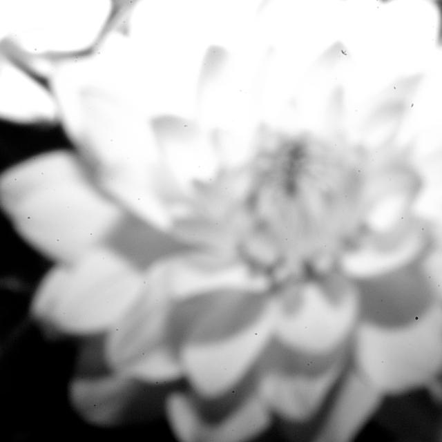 digital-pinhole-5.jpg