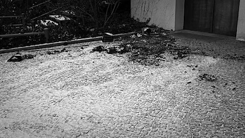 20090101-P1010981.jpg